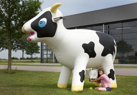 Vache gonflable à traire
